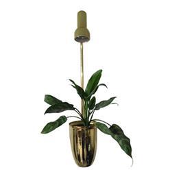 گلدان مجهز به لامپ رشد گیاه