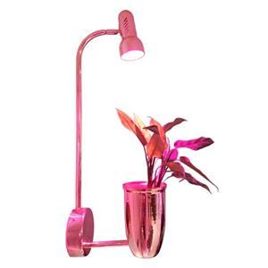 گلدان مجهز به چراغ رشد گیاه