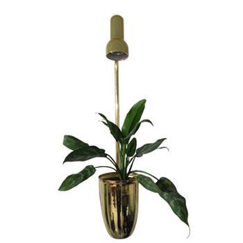 گلدان مجهز به  نور مصنوعی