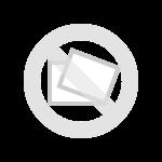 فیلتر کربن بوگیر